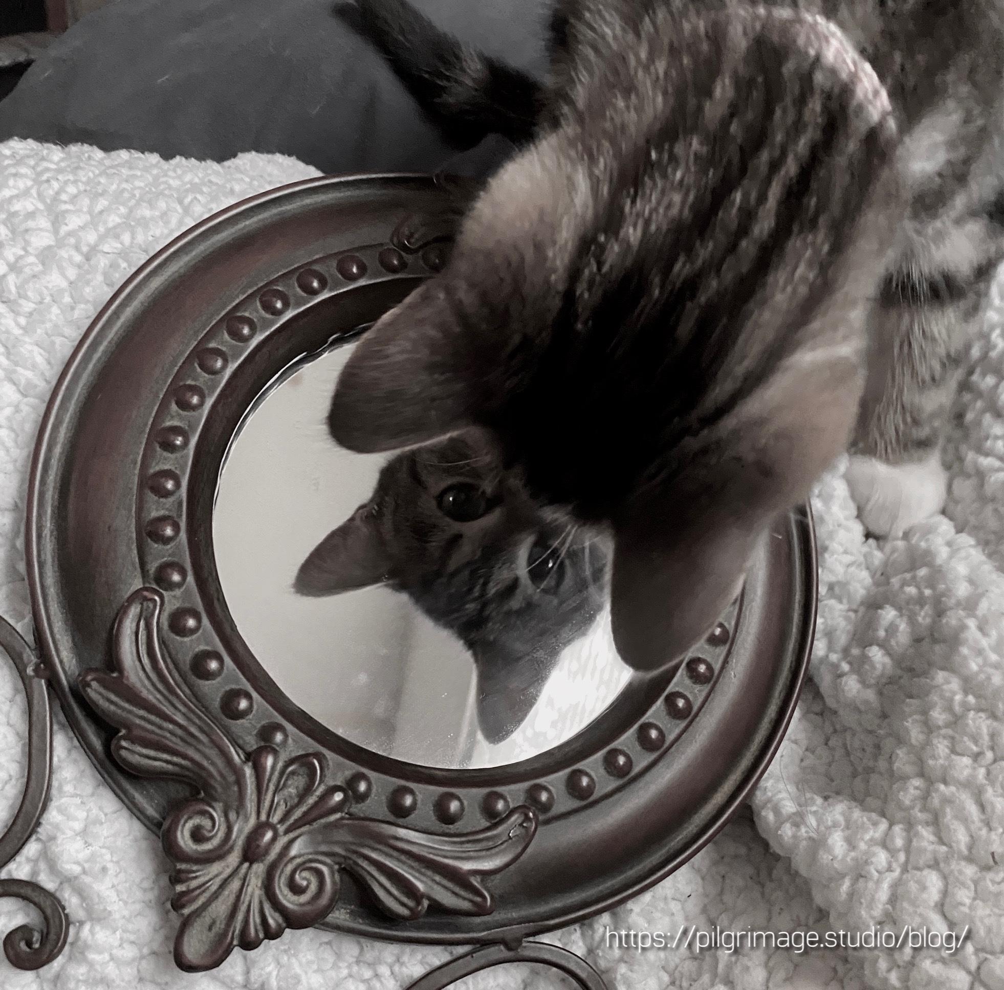 Baby Vanya looking in the mirror